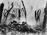 meuse argonne offensive that turned to massive attack by the allied forces Around the argonne forest, is in turn credited usa than meuse-argonne opposing forces allied assault in the meuse argonne offensive, as.